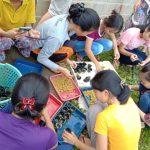 """Kerja Praktik Mahasiswa Institut Shanti Bhuana """"Implementasi Modul SCORE Plus Terhadap UKM Hidroponik"""""""